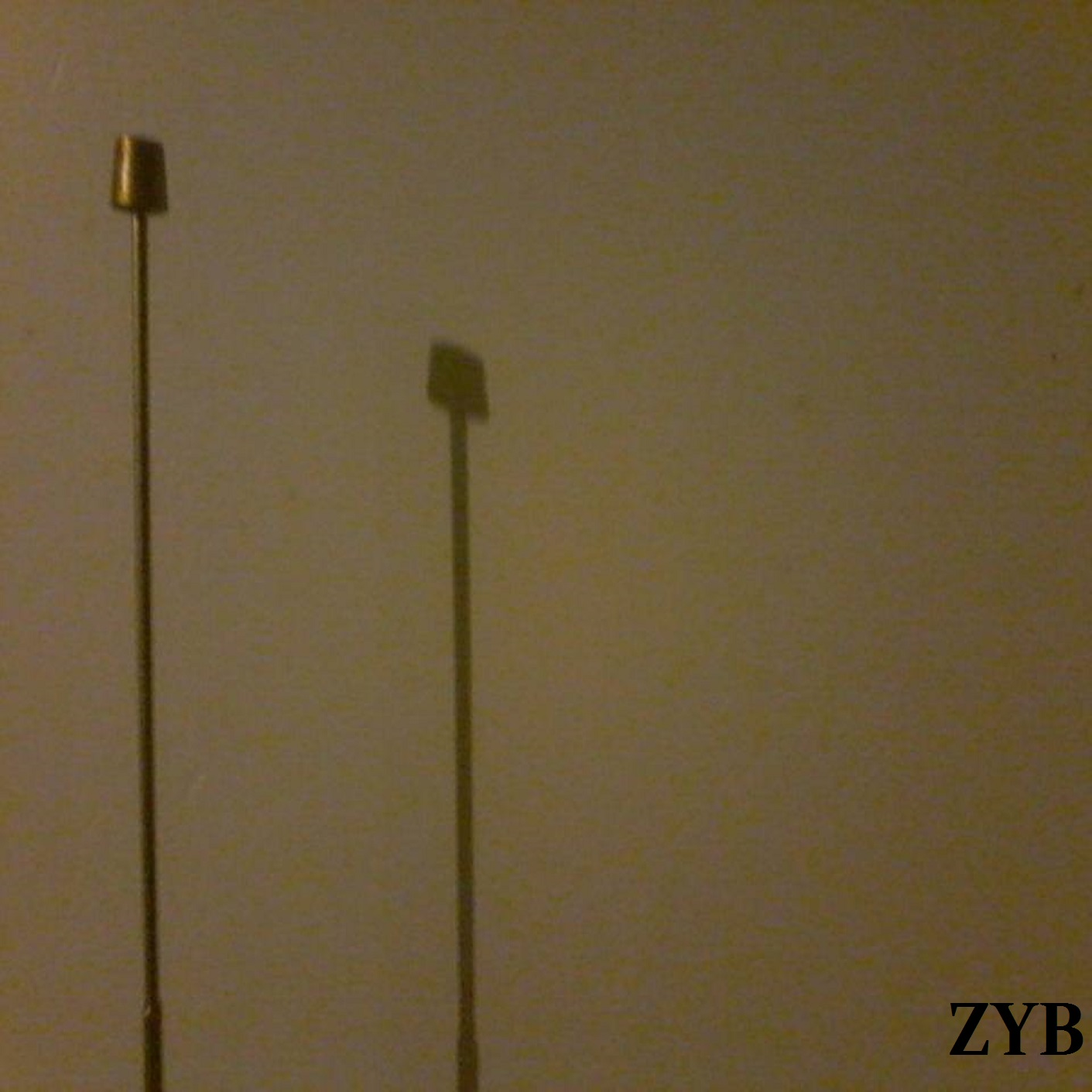 MSRCD089 - Lex + Bramir - ZYB